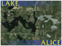 Lake homes for sale in Lake Alice - Homes, Cabins, and vacant land for sale near Tomahawk in Wisconsin's Great Northwoods.